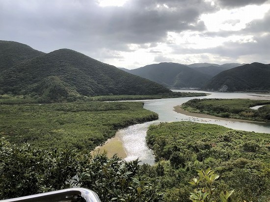 展望台からのマングローブ原生林