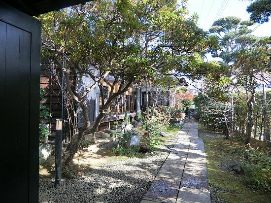 イロドリ中庭