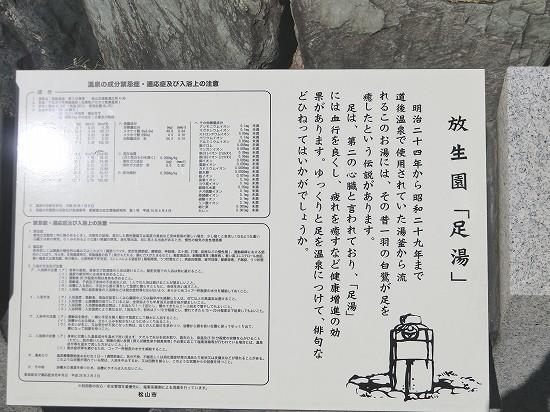 放生園「足湯」歴史