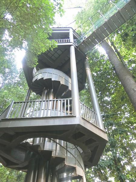 キャノピーウォーク階段
