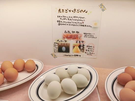 たまごかけご飯(紅花卵卵、インカの卵、美豊卵)
