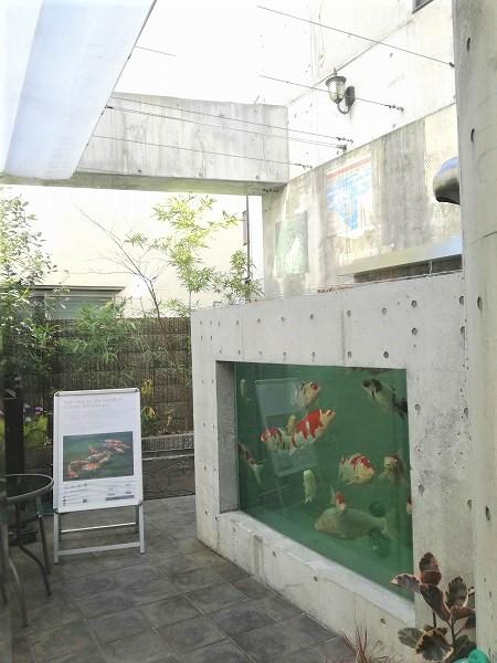 中庭の水槽